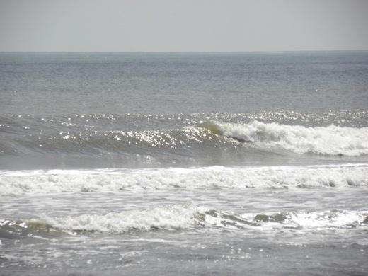 DSCN0131.JPG